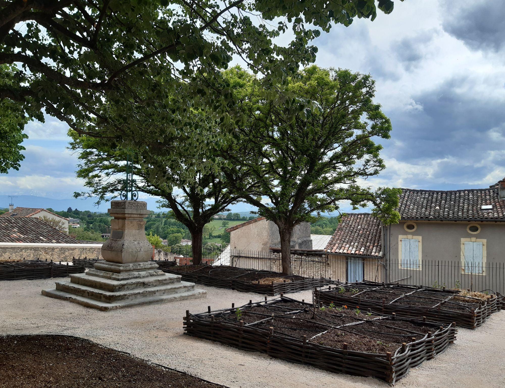 Read more about the article Square du Plateau